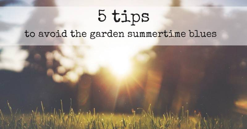 Five Tips to Avoid the Garden Summertime Blues